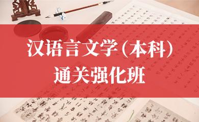 汉语言文学(本科)通关强化班