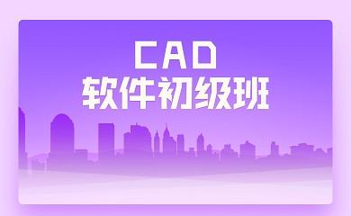 CAD软件初级班(直播+录播)