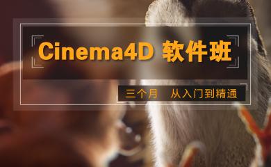 Cinema 4D软件班