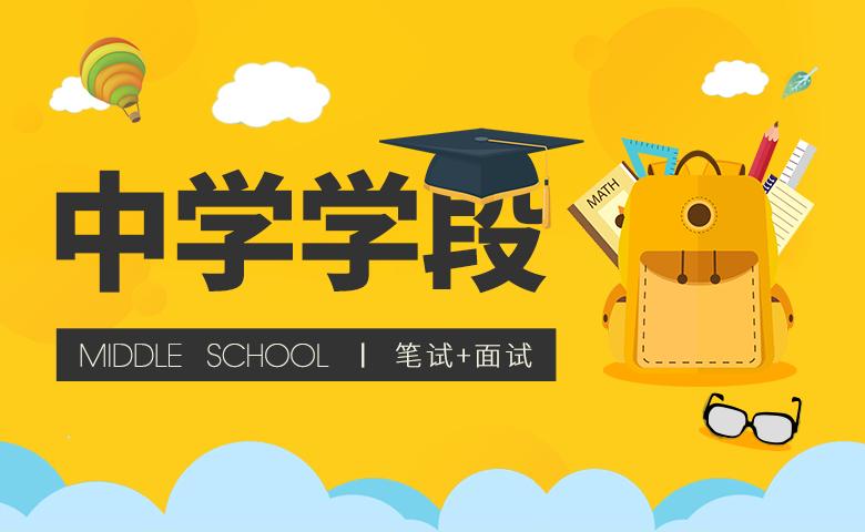 教师资格证【中学学段】含教材