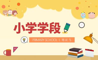 教师资格证笔试-小学学段(直播+录播)