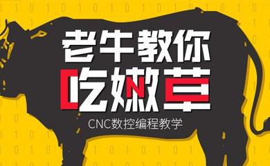 老牛教你吃(C)嫩(N)草(C)——CNC数控编程教学