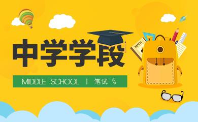 教师资格证笔试-中学学段(直播+录播)
