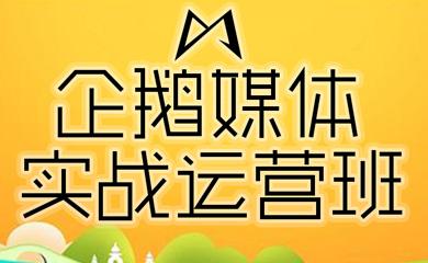 企鹅媒体实战运营班(录播)