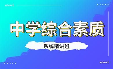 中学综合素质系统精讲班(录播)