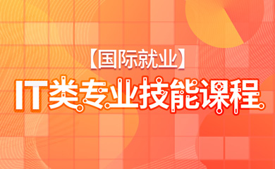 【国际就业】IT科专业技能课程