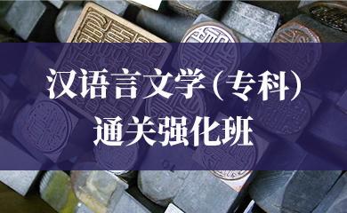 汉语言文学(专科)通关强化班