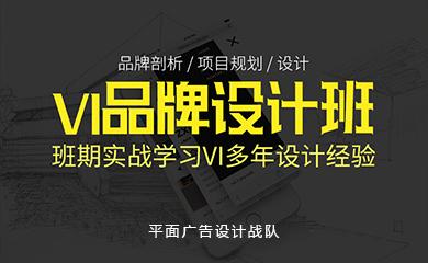 VI品牌高级班(直播+录播)